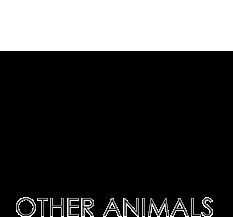 otheranimals