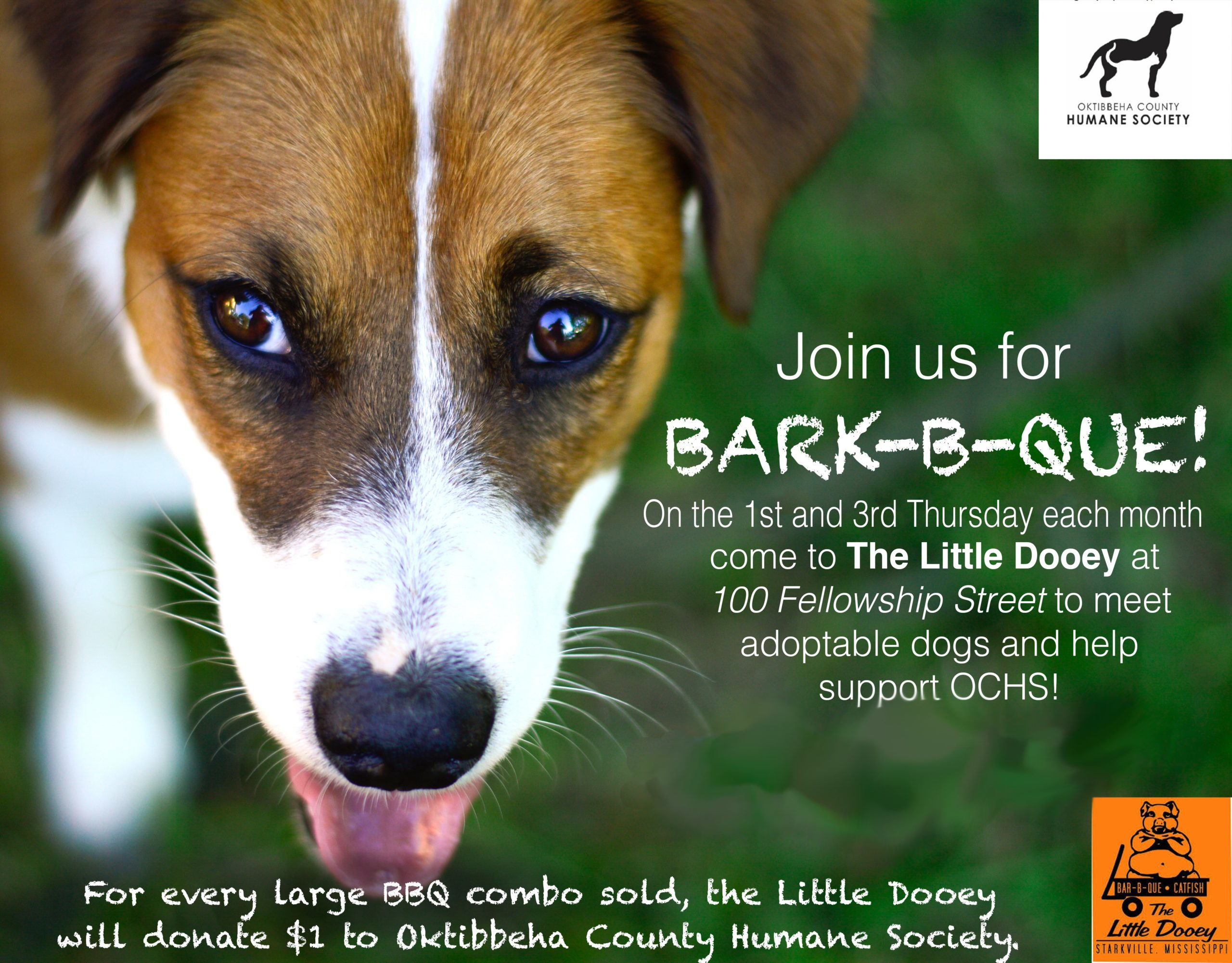 The Little Dooey's Bark-B-Que