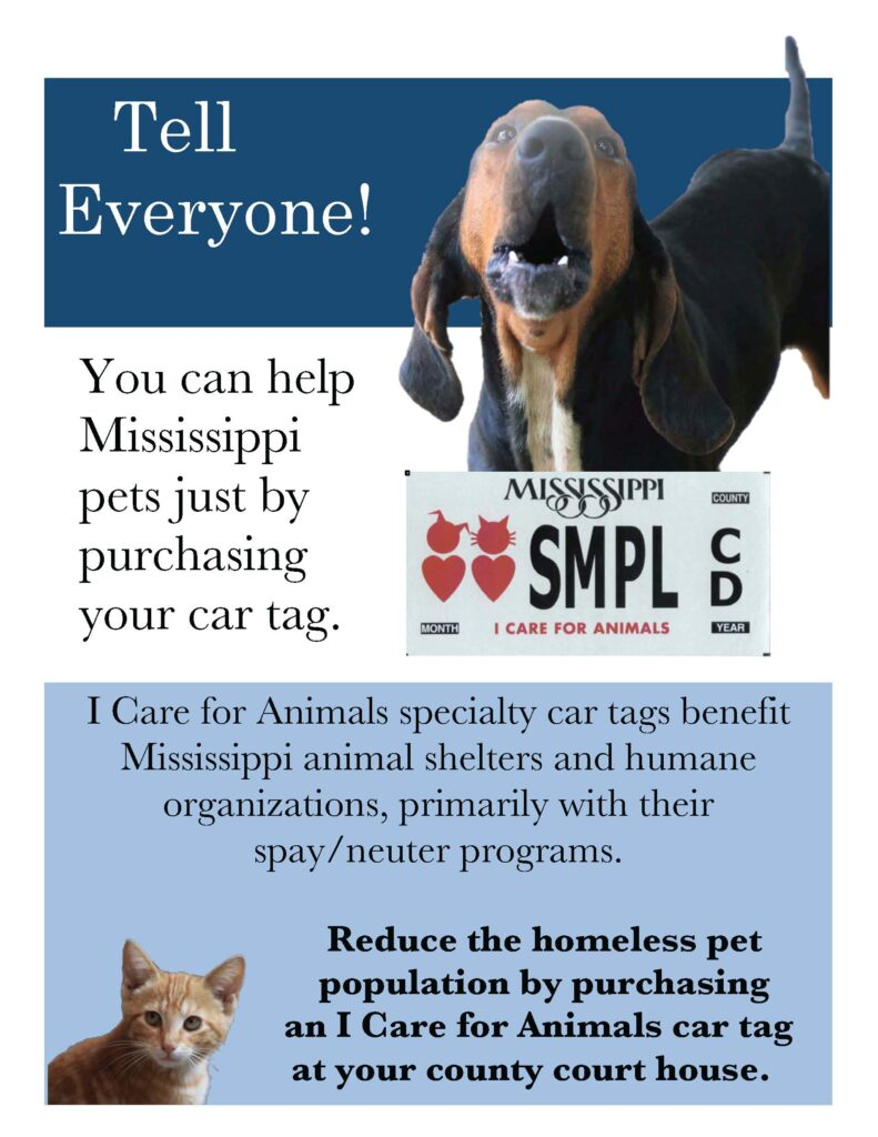 poster describing car tag program